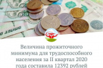 Величина прожиточного минимума для трудоспособного населения за II квартал 2020 года составила 12392 рублей